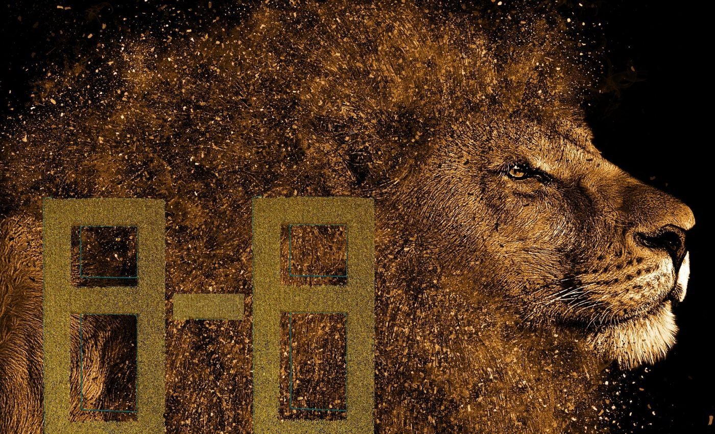 Portalul Leului 2020