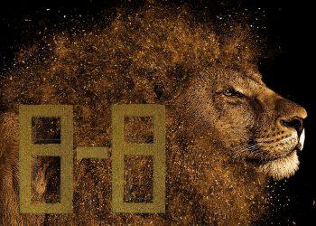 8 august 2020. Portalul Leului se activeaza! Codurile trezirii spirituale!