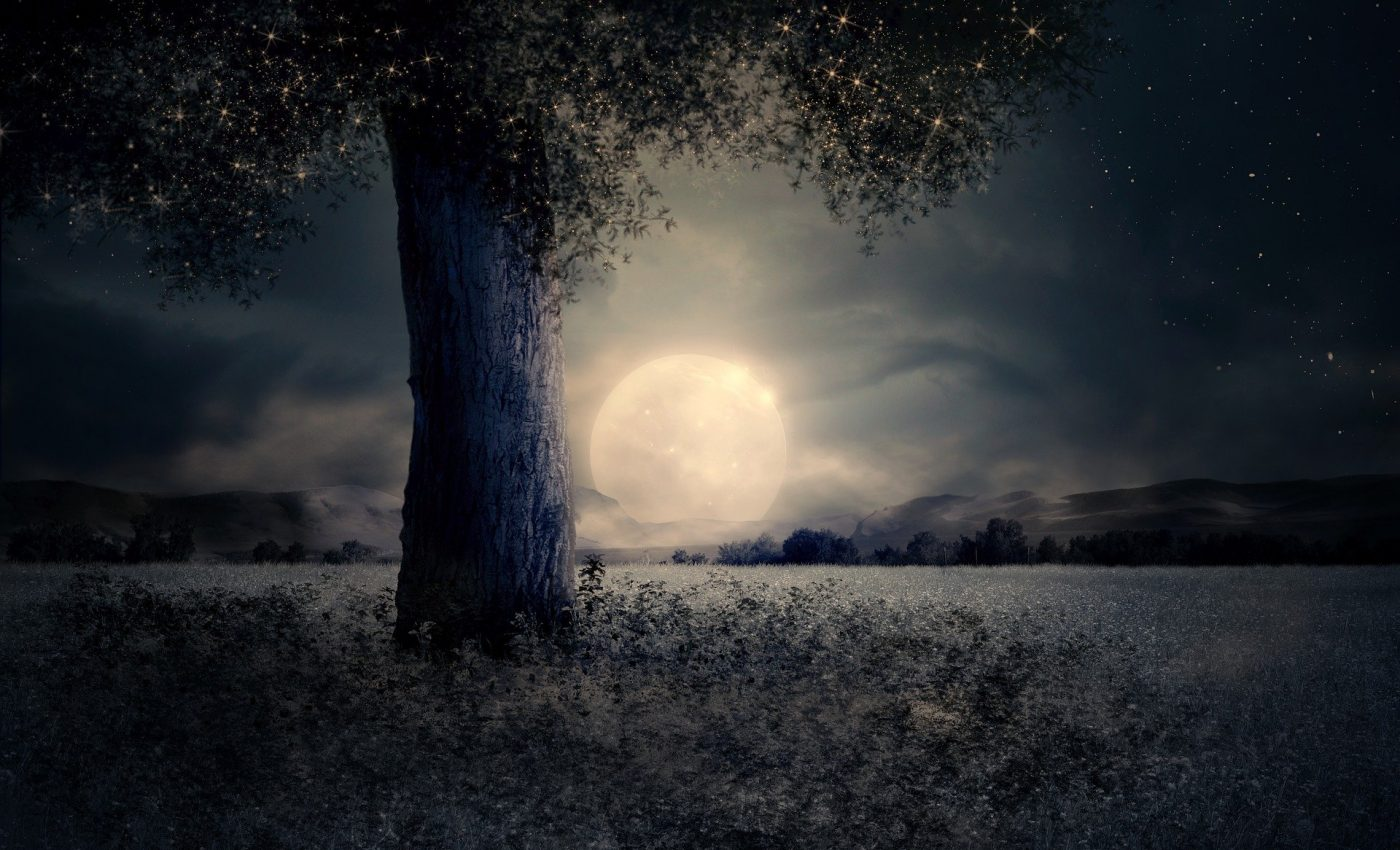 Horoscop TAROT pentru Luna plina in Berbec