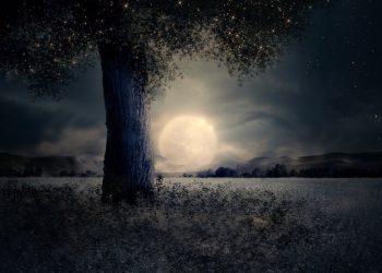 Horoscop TAROT pentru Luna plina in Berbec. Mesajul cartilor de tarot pentru zodii. Un punct culminant fierbinte!