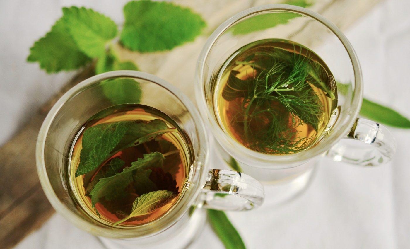 Ceai de salvie - sfatulparintilor.ro - pixabay-com - herbal-tea-1410565_1920