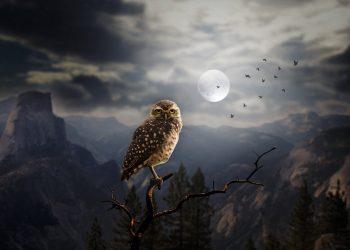 Horoscop WEEKEND 30 OCTOMBRIE – 1 NOIEMBRIE 2020. Halloween, Luna plina albastra… Ce planuri ai?