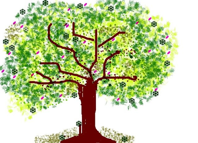 Ce inseamna cand desenezi copaci - sfatulparintilor.ro - pixabay_com - tree-53501_640