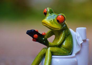 Ce sa faci cand nu poti sa faci treaba mare - sfatulparintilor.ro - pixabay_com - frog-914132_1920