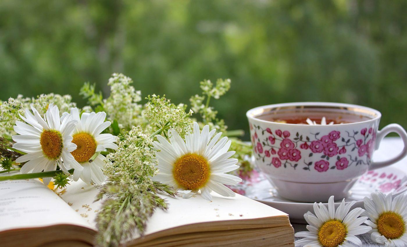 Ce boli vindeca ceaiul de musetel