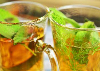 Ce boli vindeca ceaiul de salvie - sfatulparintilor.ro - pixabay_com - herbal-tea-1410563_1920