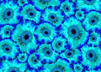 Ce semnifica culoarea turcoaz - sfatulparintilor.ro - pixabay_com - flowers-1602389_1920