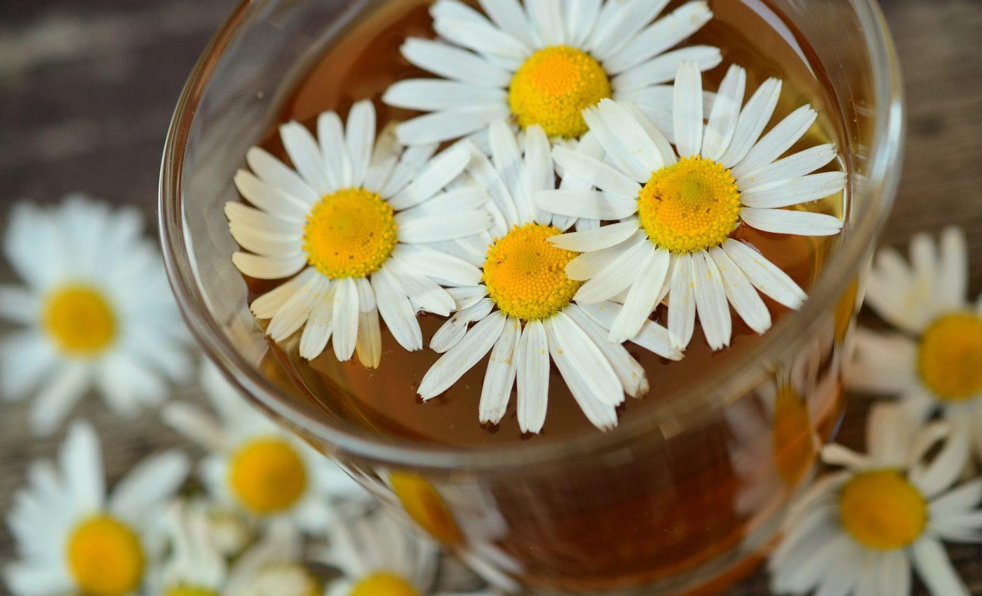 Ce boli vindeca musetelul - sfatulparintilor.ro - pixabay_com - chamomile-829220_1920