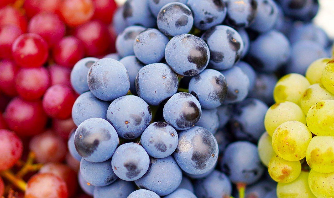 Dieta cu struguri - sfatulparintilor.ro - pxiabay-com - grapes-4495944_1920