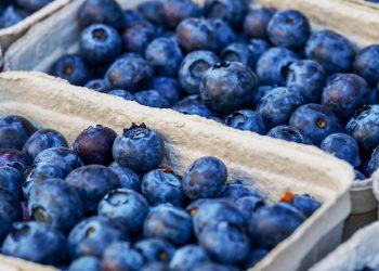 beneficiile afinelor - sfatulparintilor.ro - pixabay-com - blueberries-3474854_1920
