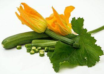 Beneficiile dovlecelului - sfatulparintilor.ro - pixabay-com - zucchini-572542_1920