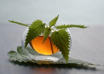 Ce boli vindeca ceaiul de urzica