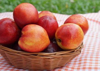 Dieta cu nectarine - sfatulparintilor.ro - pixabayu-com - summer-3577412_1920