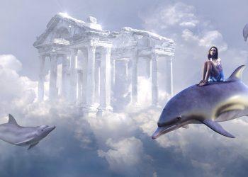 Ce inseamna cand visezi delfini