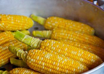 dieta cu porumb fiert - sfatulparintilor.ro - pixabay_com - pop-corn-785074_1920