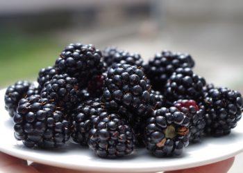 Beneficiile murelor - sfatulparintilor.ro - pixabay_com - blackberries-1045728_1920