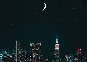 TAROT pentru Luna noua in Taur - sfatulparintilor.ro - pexels-sanaan-mazhar-3052361