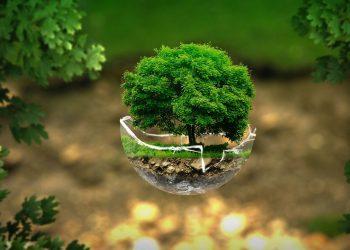 Cum sa-ti protejezi energia personala - sfatulparintilor.ro - pixabay_com - environment-2196690_1280
