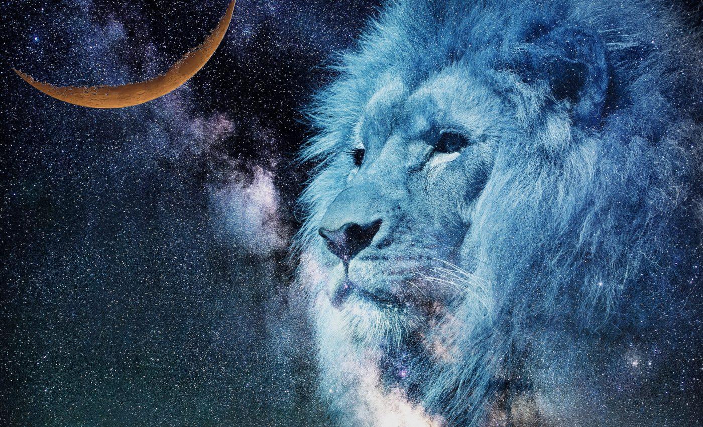 TAROT pentru Luna noua in Leu - sfatulparintilor.ro - pixabay-com - lion-2400168_1920