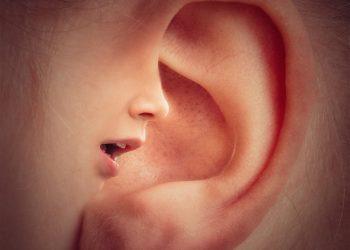 ce spune forma urechii despre tine - sfatulparintilor.ro - piqsels.com-id-jszna